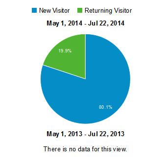 Screenshot of Google Analytics Visitor Pie Chart