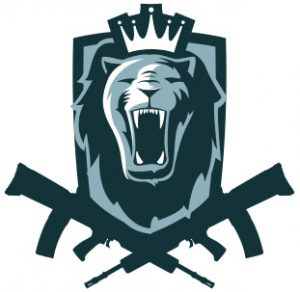 Lionsoft Logo Branding